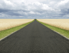 дорога к успеху