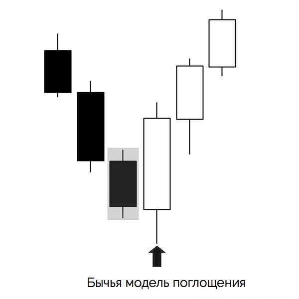 бычья модель поглощения