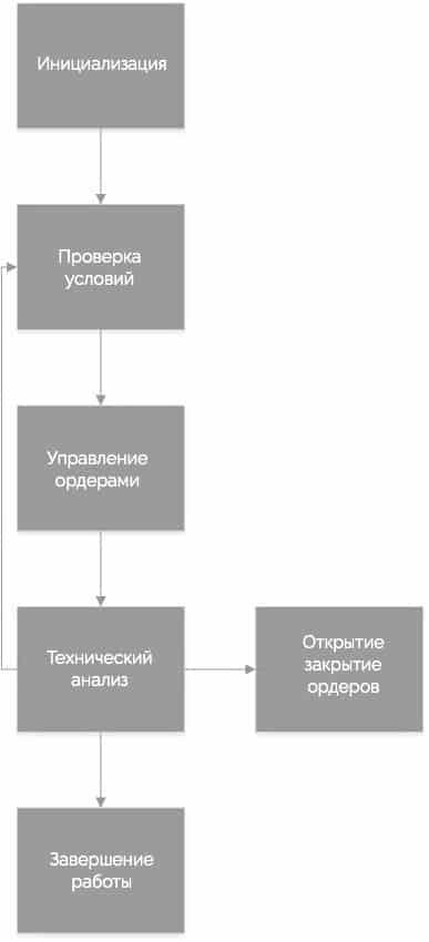 структура кода советника
